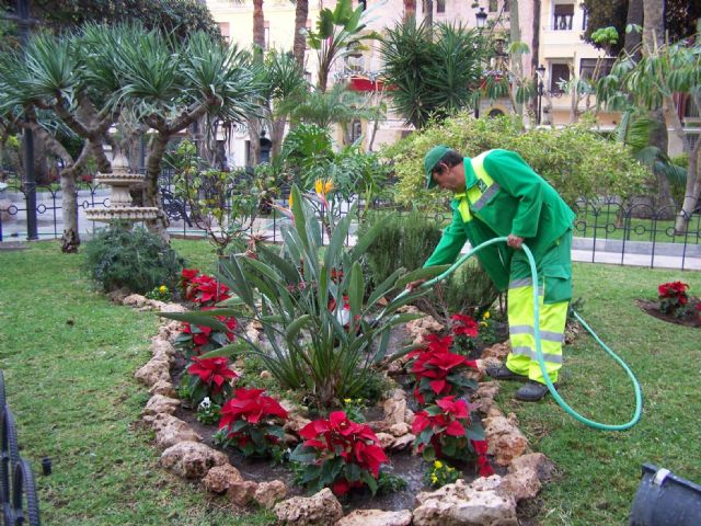 Plantaciones de jard n parques terrenos particulares for Jardines particulares